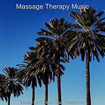 Music for 1 Hour Spa Treatment
