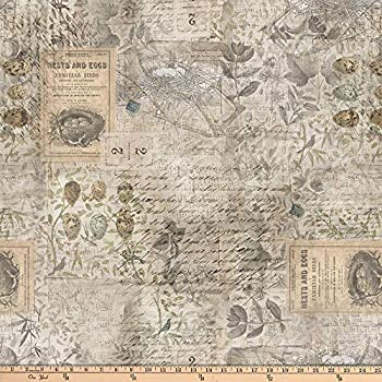 FreeSpirit Quilt Fabrics Tim Holtz Eclectic Elements Wallflower Eggs & Nest Quilt Fabric By The Yard Multicolor