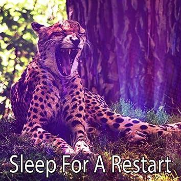 Sleep For A Restart