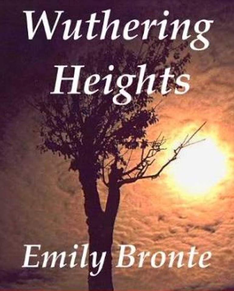 おとこ貸し手ライラックWuthering Heights (English Edition)