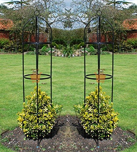 Generic.. hormigas Sup apoyo rosas F-2 jardín plantas trepadoras ...