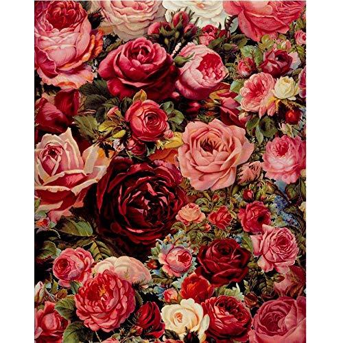 SZYUY schilderen op nummer, kunst olieverfschilderij op canvas, DIY olieverfschilderij, tekening zonder lijst voor volwassenen en kinderen, knutselen door kits cijfers, roze, rood, luxe, 40 cm x 50 cm