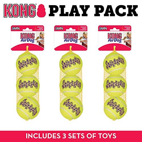 KONG Hundespielzeug Tennisball, quietschend, Größe M, 9 Stück