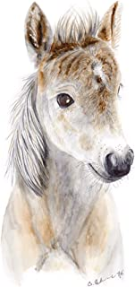 Baby Horse Foal Brown White Watercolor Nursery Wall Art Decor Available In Various Sizes