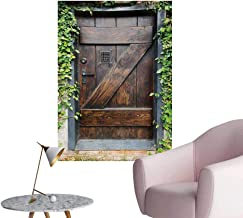 Anzhutwelve Rustic Wallpaper Small Spanish Style Dark Stained Wood Door Secret Garden with Grated Window PictureBrown Green W32 xL48 Cool Poster