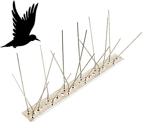 2021 labworkauto Stainless Steel Bird Spikes Pigeons Bird Deterrent discount Spikes Defender outlet online sale 10-Pack 10 Feet online