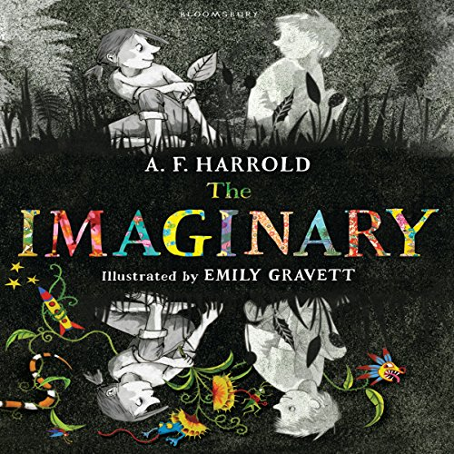 The Imaginary cover art