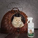 Geruchsneutralisierer Spray für Katzen – natürlicher Katzenurin Entferner – gegen Katzenklo Geruch - 6