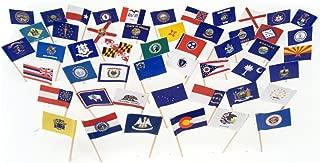 All 50 US State Flag Toothpicks (100)