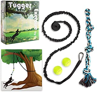 PUPTECK Tugger Rope Dog Toy - Outdoor Exercise Dog Toys with 8ft Hanging Bungee Rope and Tennis Ball for Medium, Large Dogs, Safe Interactive Tug of War Toys