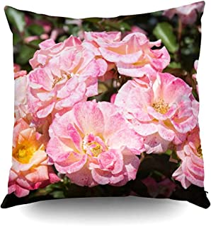 Ducan Lincoln Pillow Case 2PC 18X18,Funda De Almohada De Tiro Cuadrado Cubiertas Blooming Beautiful Bunch Roses In Spring Garden Pascua Ambos Lados Imprimir Zip Funda De Almohada Cojín