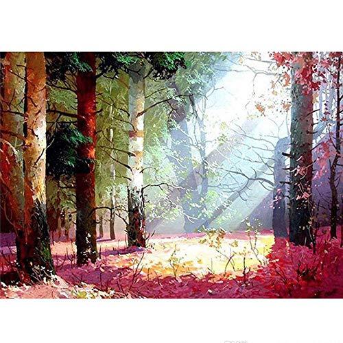 YISANWU måla efter nummer akrylfärg borste väggmålning målningskit vattenfärger målarset stafflar borstar vuxna diy, solig skogslönn, 40 x 50 cm målning gåva heminredning