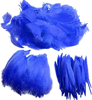 Feather for Crafts,250 Pcs Coloured Feather Striking Feathers for DIY Dream Catchers Natural Crafts Feathers for Wedding/Party/Decorations(3 Sizes) (deep Blue)