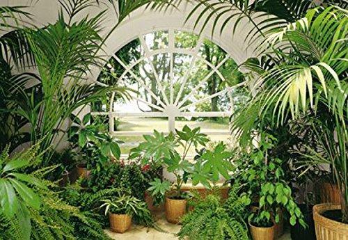 1art1 Pflanzen - Wintergarten 8-teilig Fototapete Poster-Tapete 368 x 254 cm