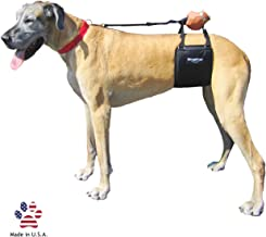Best my dog gets out of every harness Reviews