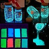 Zchui - Pigmento de Pintura Que Brilla en la Oscuridad, 10 g, Color Fluorescente, Azul, Tamao Libre