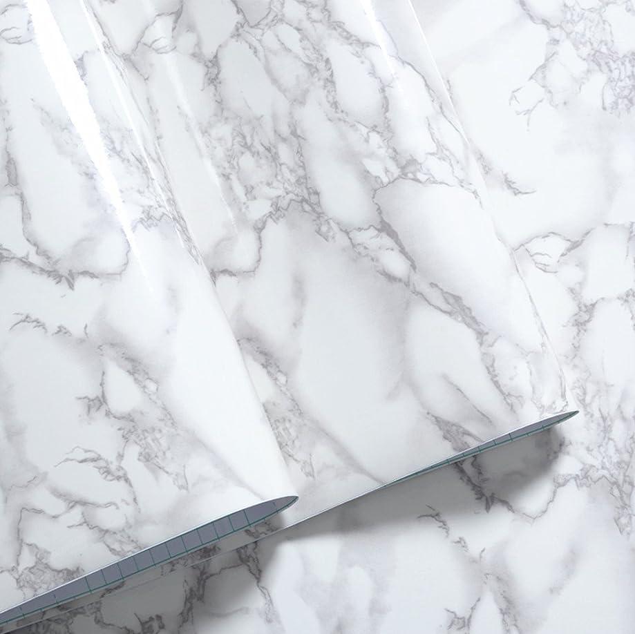 病シンプトン恐れFChome 大理石のステッカーの接触紙カウンタートップキッチンキャビネット家具の改修による防水防汚PVCグレー/ホワイトロール(40cmx200cm)