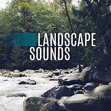 Landscape Sounds - Sounds Wonderful, Imitation of Nature, Listen to Music, Noise is Best, Help with Disease, Cure the Twenty-first Century, Human Body is an Instrument