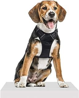 Traspirante per Cuccioli di Piccola Taglia con guinzaglio Regolabile Pettorina per Cani iFCOW