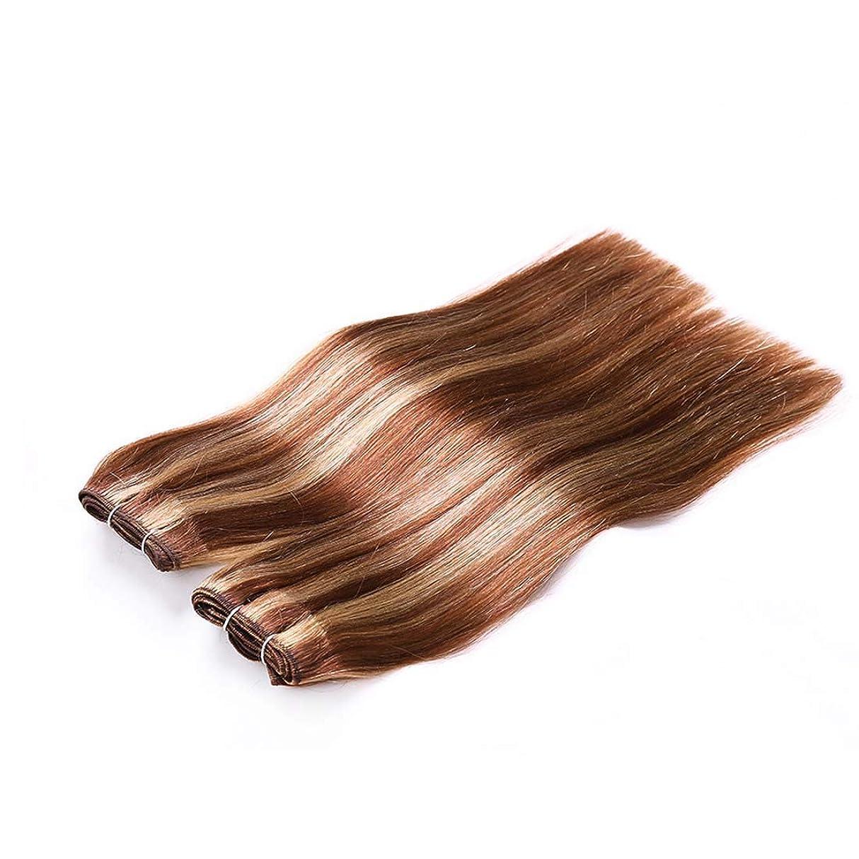 観光に行く温帯過半数JIANFU 髪カーテン レアルヘア ストレートヘア ミックスカラー ウィッグカーテン レディース ノットなし 染める可能 (サイズ : 16inch)