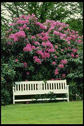 Metalen bord Engels Country Gardens Uk Gb 131061 Tuinbank En Rhododendrons A4 12x8 Aluminium