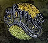 Songtexte von Baroness - Yellow & Green
