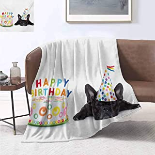 jecycleus Kids Birthday Commercial Grade Printed Blanket Sleepy French Bulldog Party Cake with Candles Cone Hat Celebration Image Queen King W70 by L90 Inch Multicolor