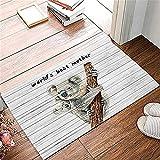 Felpudo de entrada, alfombra absorbente para puerta delantera...