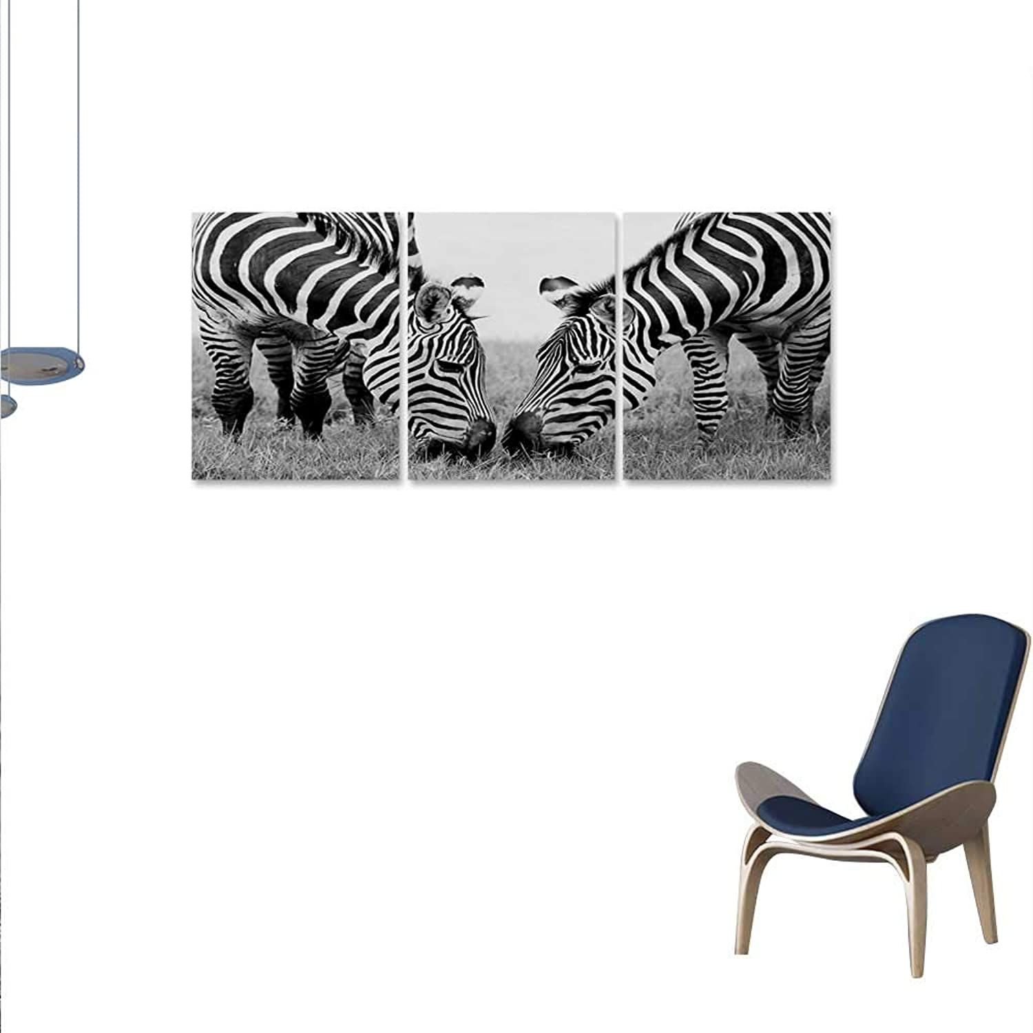 Animal 3 Piece Canvas Wall Art Zebras African Wildlife Burchell Safari Theme National Park Monochrome Picture Print Paintings Home Wall Office Decor 16 x24 x3pcs Black White