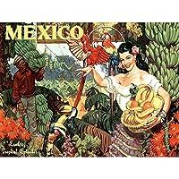 Travel Tropical Fruit Toucan Parrot Mexico Vintage Advertising Art Print Poster Wall Decor 12X16 Inch 旅行トロピカルフルーツオウムメキシコビンテージ広告ポスター壁デコ