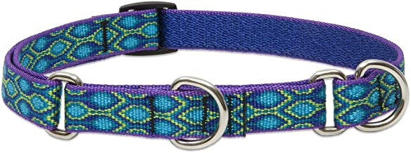 Lupine 3/4-inch Rain Song Combo Collar for Medium to Large Dogs