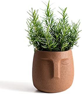GeLive Cement Head Planter with Drainage Hole Face Vase Modern Statue Flower Pot Plant Succulent Windowsill Box Artsy Home...