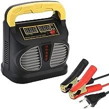 Suchergebnis Auf Für Batterieladegerät 12v 10a