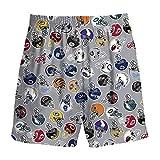 NFL Logos All Over Youth 4-7 Pajama Shorts (Medium 5-6) Gray