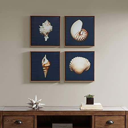 Amazon Com Madison Park Ocean Seashells 4 Piece Set Wall Art Framed Canvas Modern Coastal Design Global Inspired Portrait Painting Living Room Accent Décor Ivory 12 X 12 Posters Prints