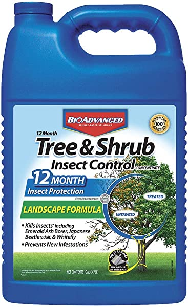 Bayer Advanced 701525 12 Month Tree And Shrub Insect Control Landscape Formula Concentrate 1 Gallon