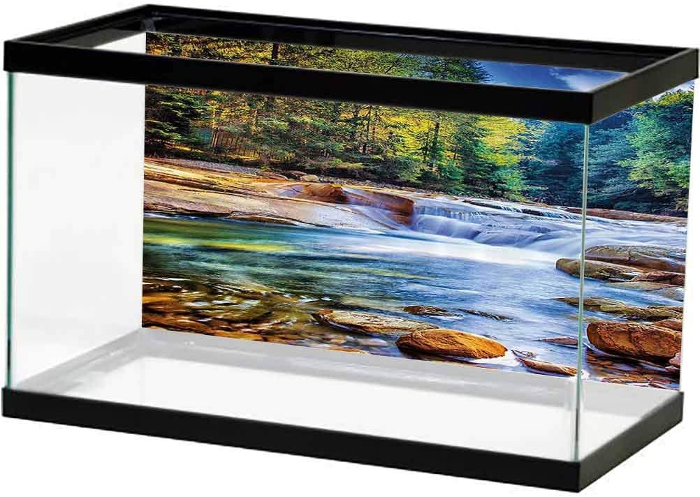 Nature Decor Genuine Free Shipping Fish Tank Background Poster Wat Jacksonville Mall Mother Theme