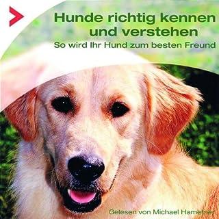 Hunde richtig kennen und verstehen. So wird Ihr Hund zum besten Freund Titelbild