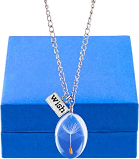CLONG Dandelion Seed Pendant Wish Necklace Real Nature Flowers Seed with Crystal Clear Glass Charm Pendant Necklace Length 24.3