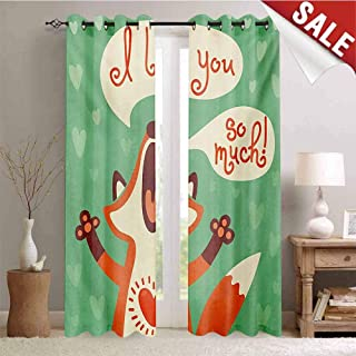 Hengshu Lifestyle Decorative Curtains for Living Room I Love You So Much Fox Humor Romance Birthday Valentines Celebration Print Waterproof Window Curtain W108 x L96 Inch Mint Green Ginger