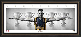 Sport Entertainment Products Luke Hodge Mini Wings