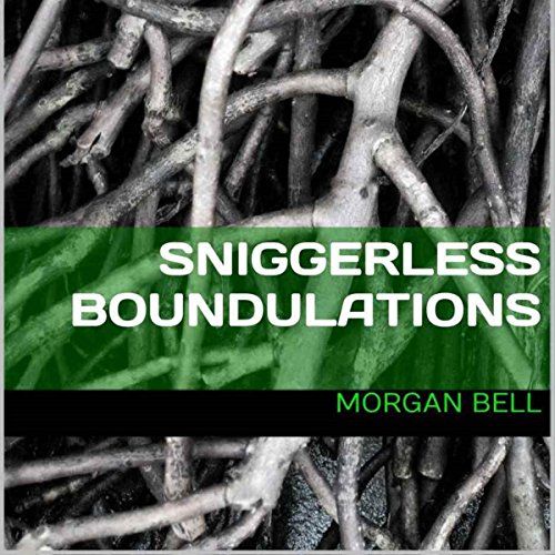 Sniggerless Boundulations audiobook cover art