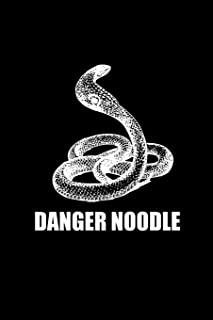 Danger Noodle: 6x9 Snake Composition Notebook, 100 Blank Ruled Lined Pages Book To Write In, Trendy Diary, Funny Animal Names Slang, Cute Internet ... Girls, Boys, Teachers, Class, School, Office
