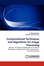 Computational Techniques and Algorithms for Image Processing