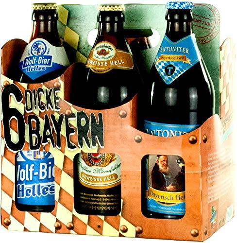Genussleben Bier Mix 4,9-5,5% 12x 0,5l (Dicke Bayern 12er), Bierset, Biergeschenk für Männer mit verschiedenen Biersorten