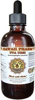 Uva Ursi Liquid Extract, Organic Uva Ursi (Arctostaphylos Uva-Ursi) Tincture 4 oz