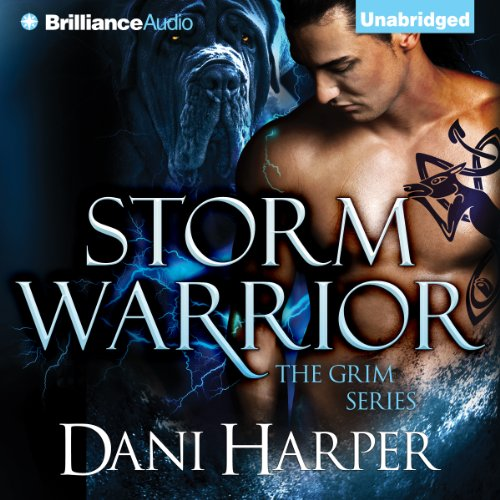 Storm Warrior audiobook cover art