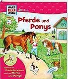 WAS IST WAS Junior Band 5. Pferde und Ponys: Wie pflegt man ein Pferd? Wie lernt man reiten? Welche Pferde gibt es? (WAS IST WAS Junior Sachbuch, Band 5) - Christina Braun