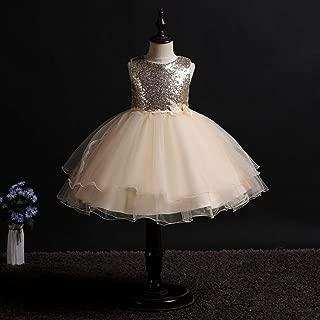 Luxury Sequined Princess Dress Children Dress Princess Dress Tutu Dress Sleeveless Sequined Flowers Gauze Dress ryq (Color : Champagne, Size : 110cm)