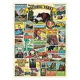 Cavallini Decorative Wrap Poster, National Parks, 20 x 28 inch Italian Archival...